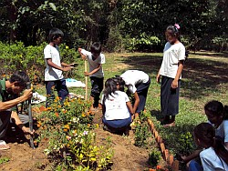 Students planting butterfly garden